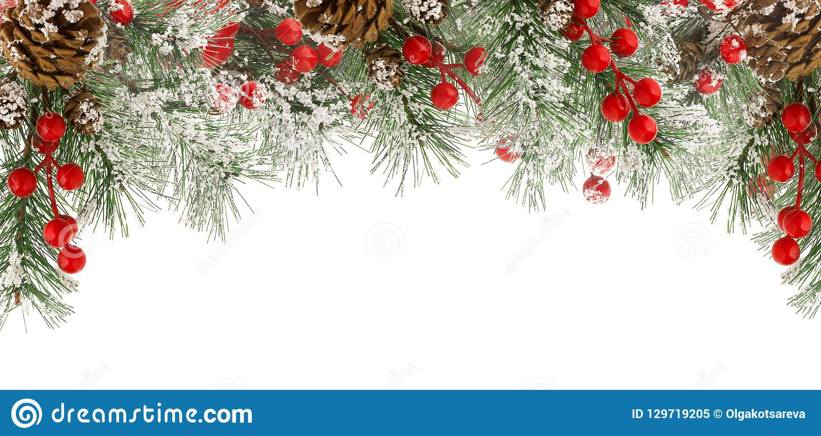 Christmas border of green fir branches with snow, red berries and cones isolated on white