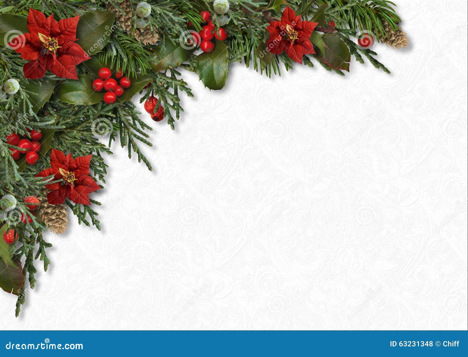 Christmas Border Of Hollypoinsettia Mistletoe Fir Treecones Stock