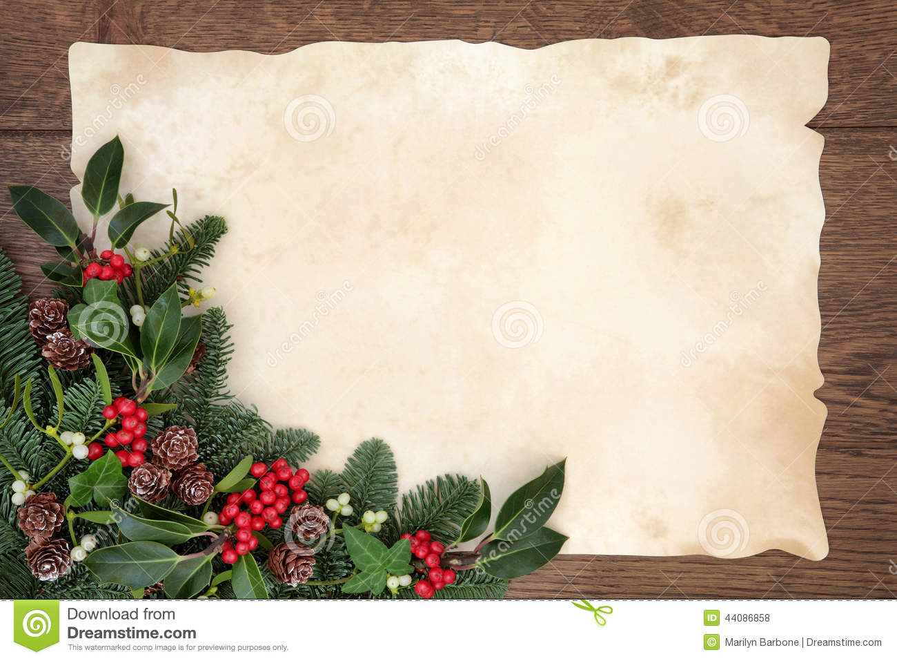 Christmas and winter background border with fir, holly, ivy, mistletoe ...