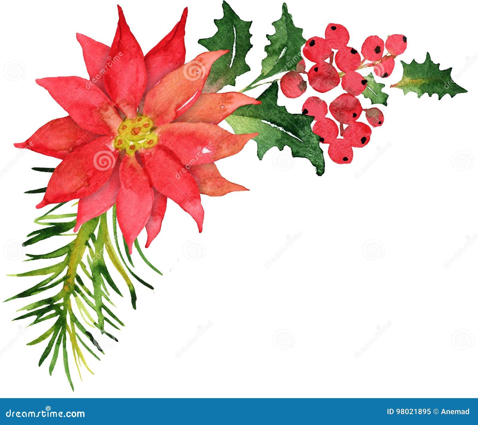 Poinsettia Template | Christmas Bouquet With Poinsettia Stock Illustration Illustration