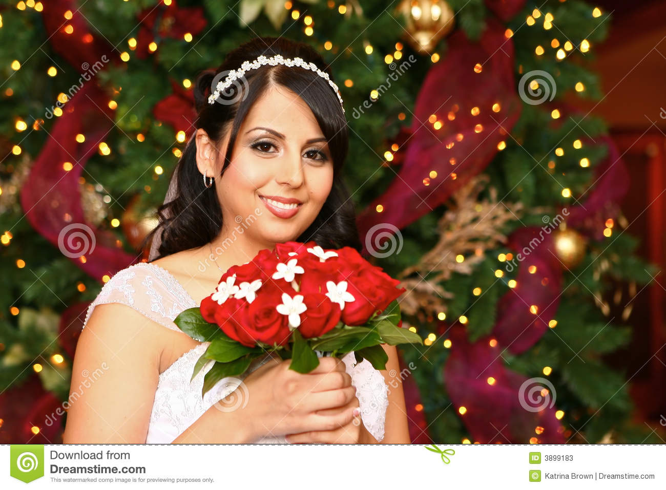 A Christmas Bride.Christmas Bride Stock Image Image Of Married Indian 3899183