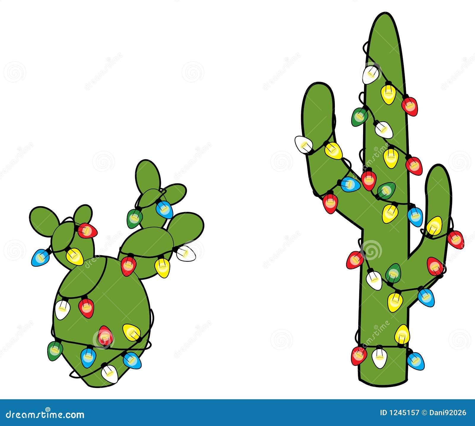 Christmas Cacti Royalty Free Stock Photography - Image: 1245157