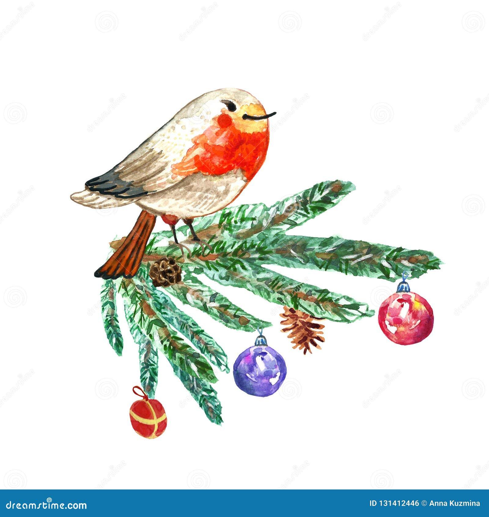 Christmas Card With Cute Hand Drawn Robin Bird On Fir Tree Branch ...