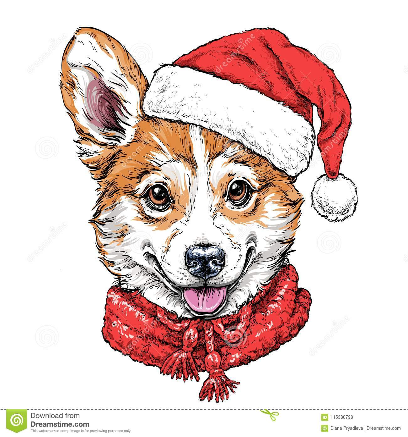 a53ed5da246 Christmas card with Puppy Pembroke Welsh corgi portrait in red Santa`s hat  and scarf