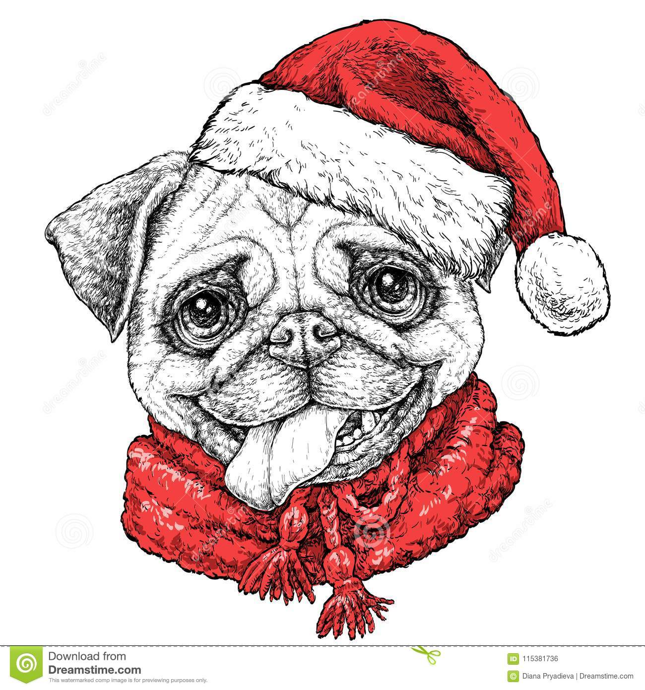 Christmas Card With Puppy Pug Portrait In Red Santa S Hat And Scarf Vector Illustration Stock Vector Illustration Of Drawing Playful 115381736