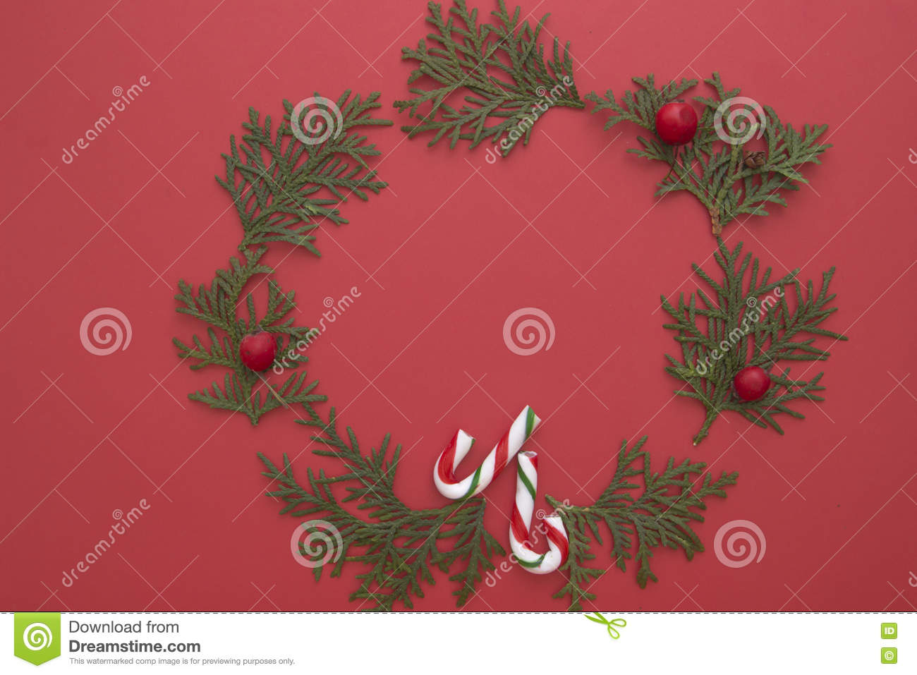 Christmas composition made of green thuja twigs and candy canes on red background. Top view, flat lay. Copy space for