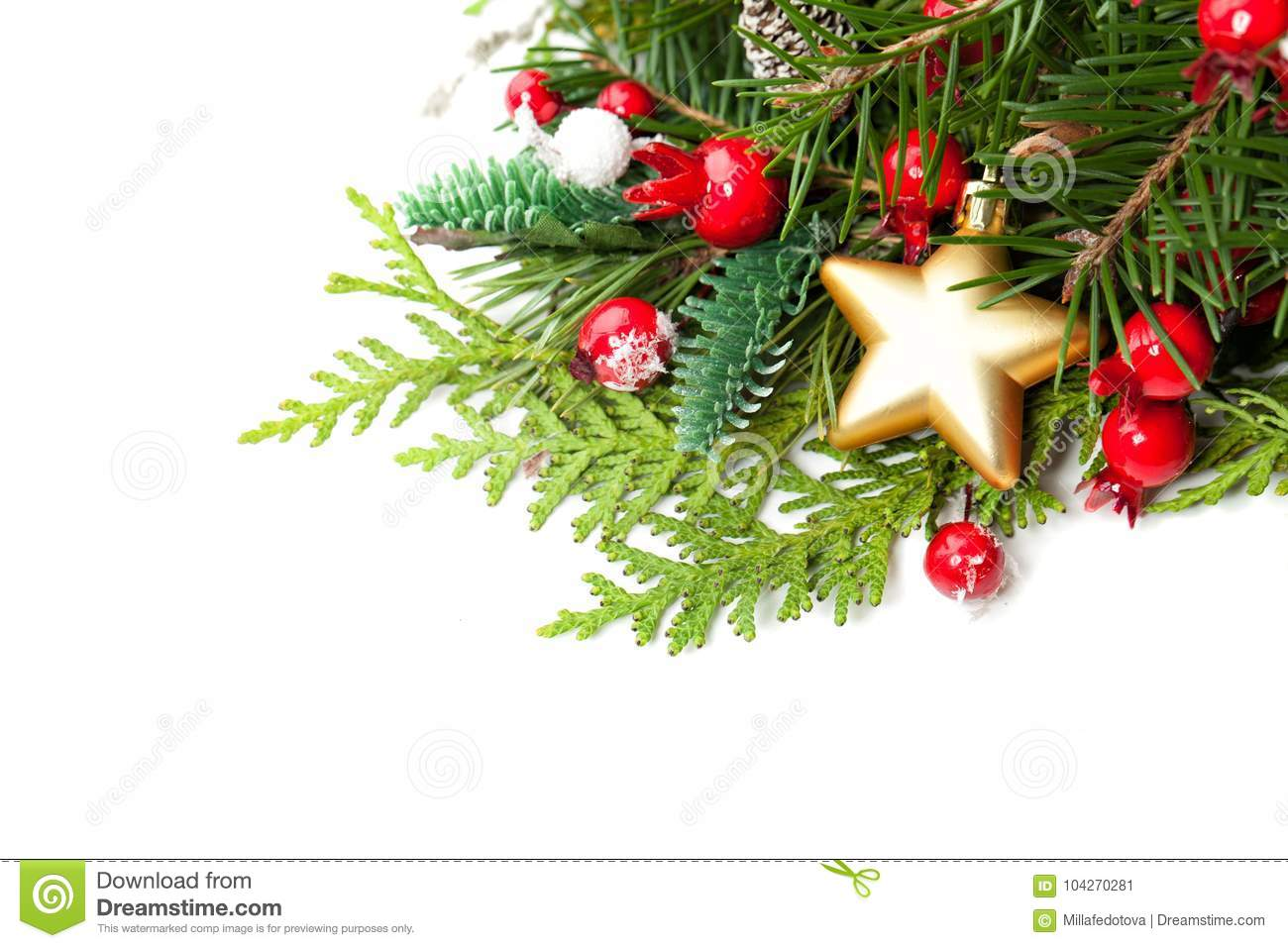 christmas decor evergreen xmas tree gold star and red berries on white background new year christmas background with copy space