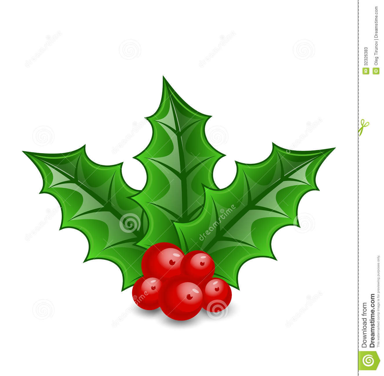 christmas decoration holly berry branches isolated white