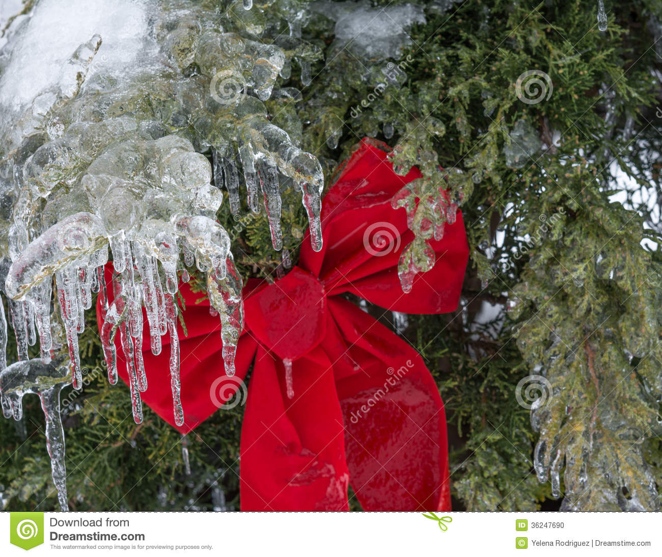 Christmas decoration under bad weather stock photo image for Bad christmas decoration