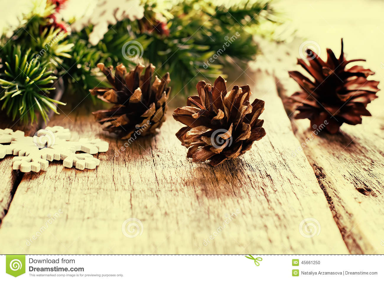 Christmas decorations with fir tree branch cones stock for Fir cone christmas tree decorations