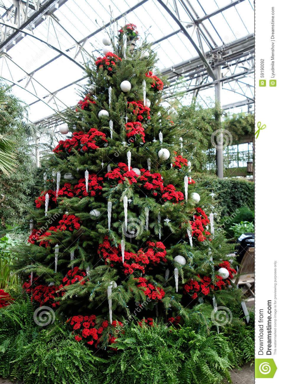 Christmas Decorations In The Greenhouses Of Longwood Gardens Stock ...