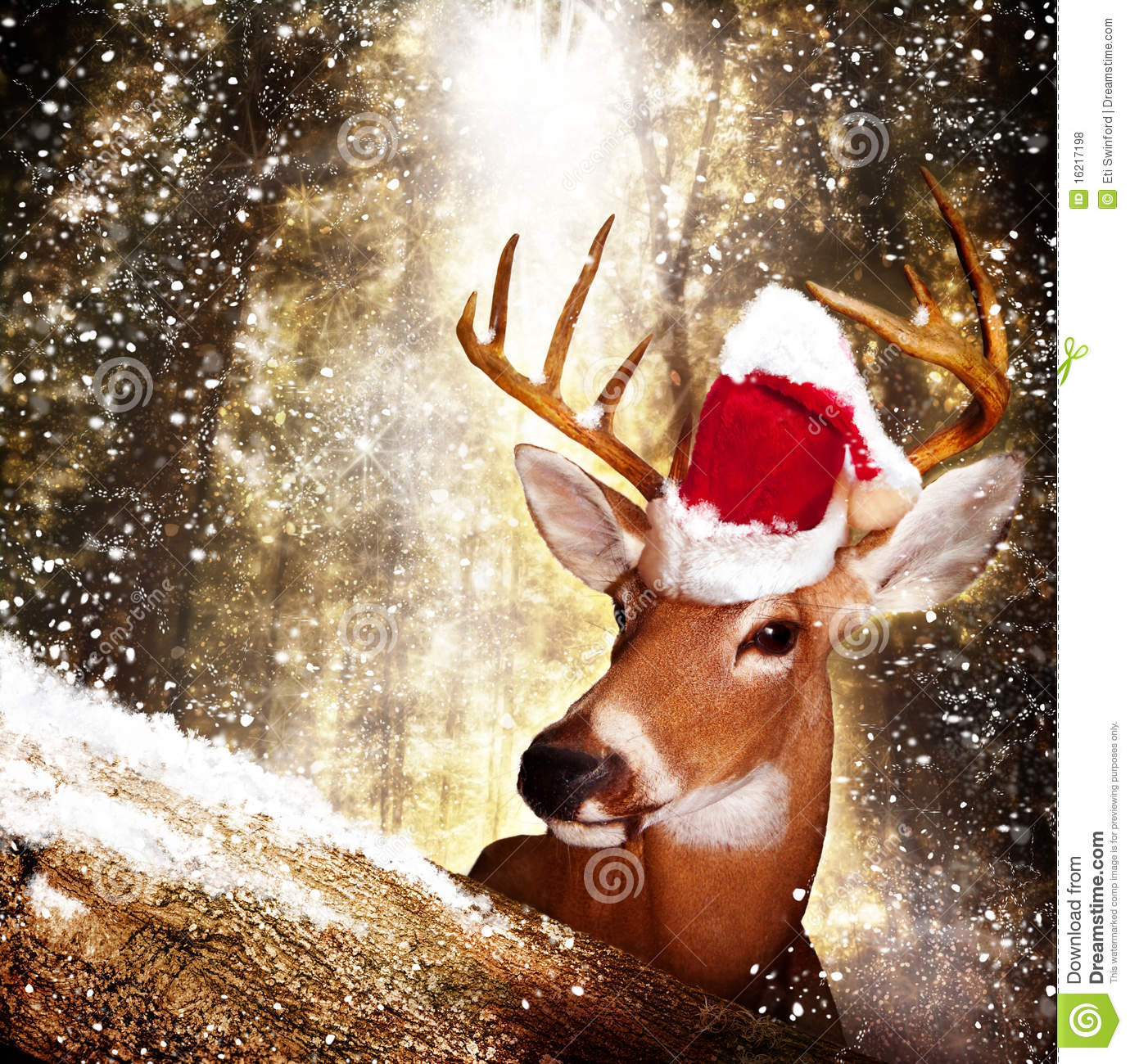 mature deer with a Santa hat looks over a tree as the snow falls in ...