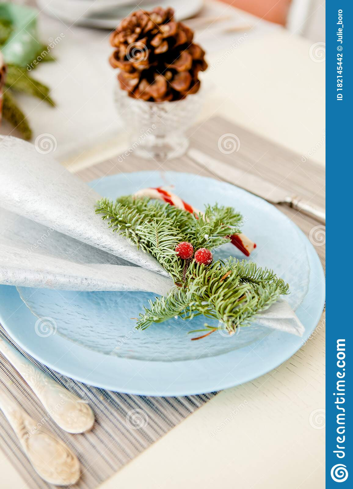 Christmas Dinner Plate With Textile Napkins And Candy ...