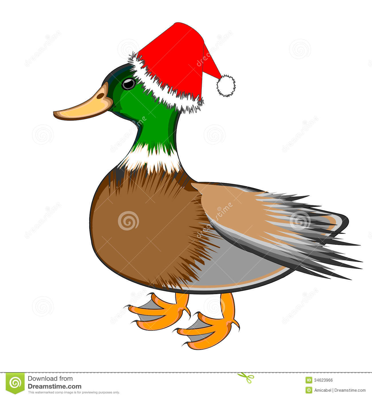 Christmas Duck Isolated On A White Background Royalty Free Stock ...