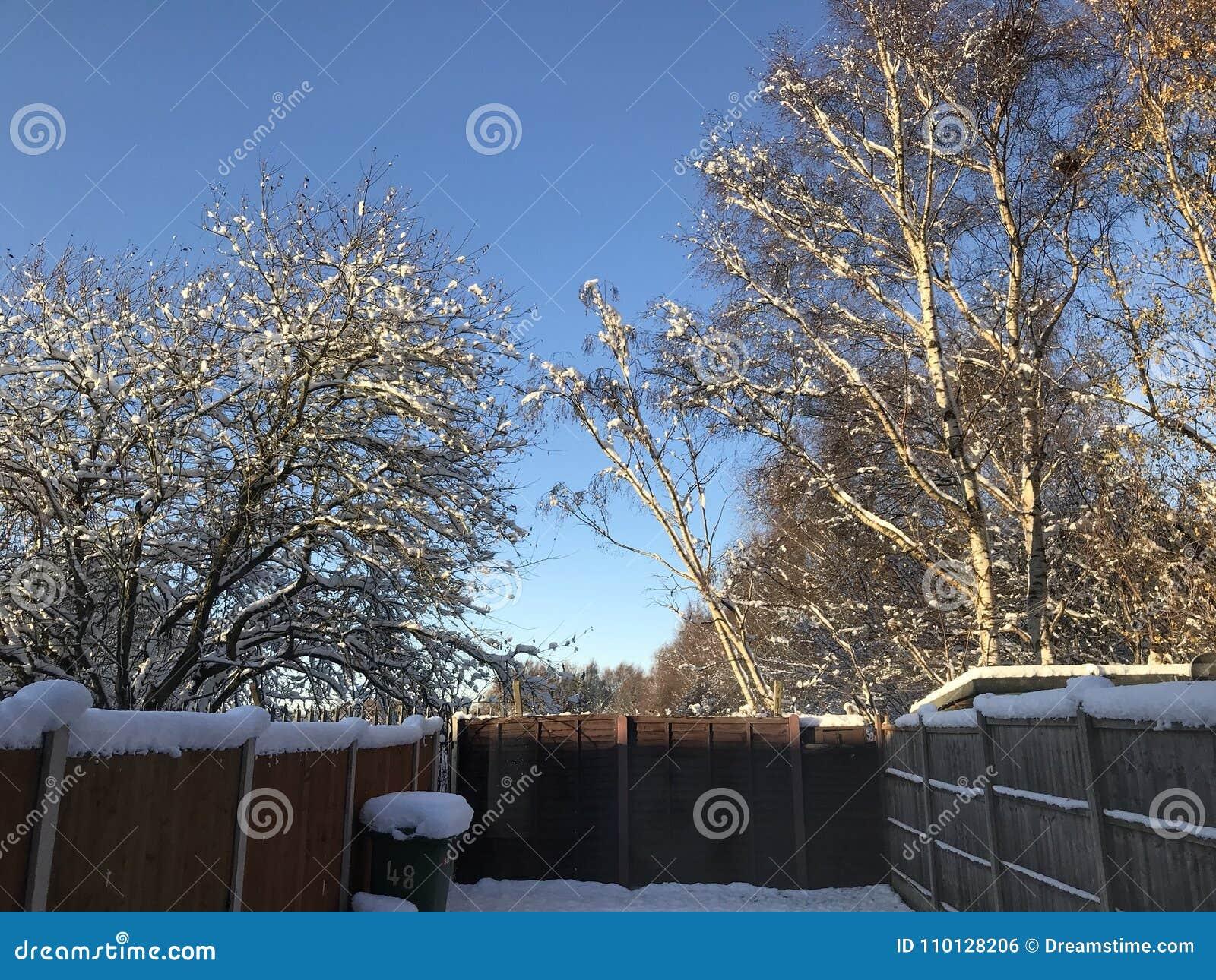 England Christmas Snow.Winter Wonderland At Christmas Stock Photo Image Of Winter
