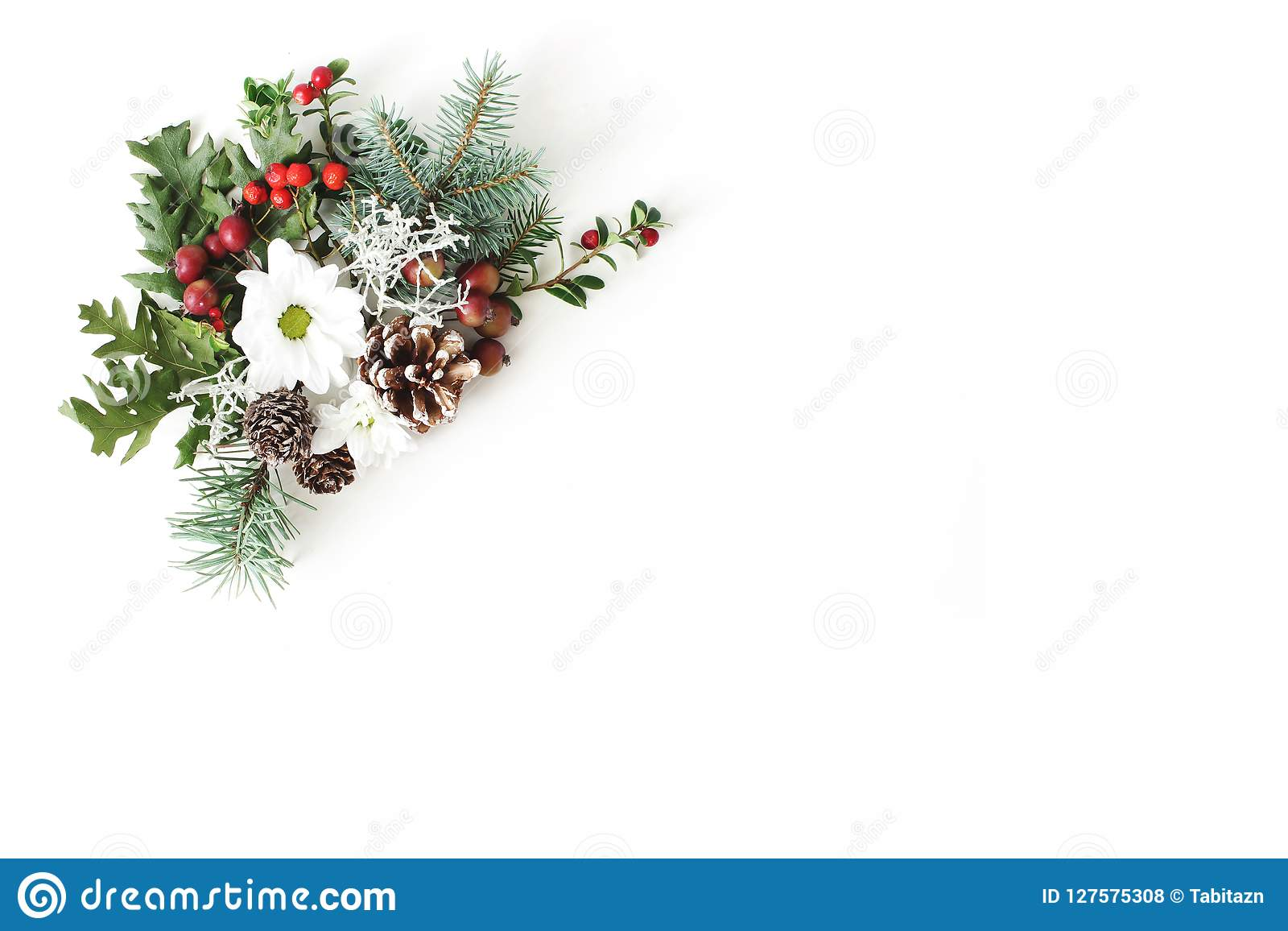 Christmas festive floral composition. Pine cones, fir, tree branches, oak leaves, red rowan berries and chrysanthemum