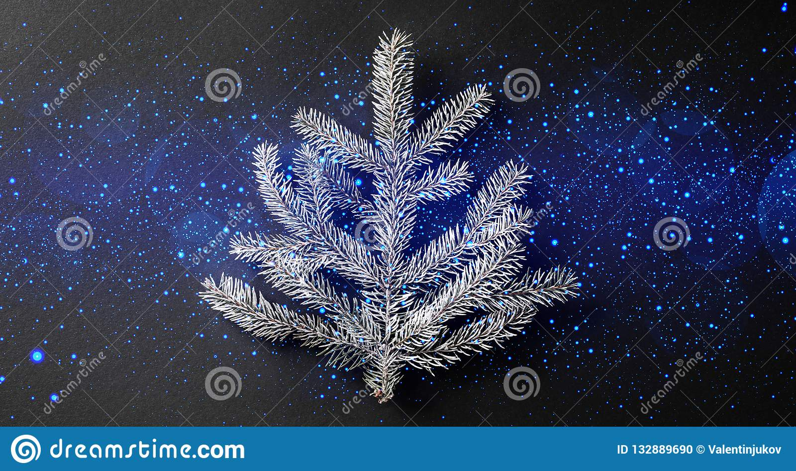 Christmas fir branch on dark black background with light, bokeh, sparking.