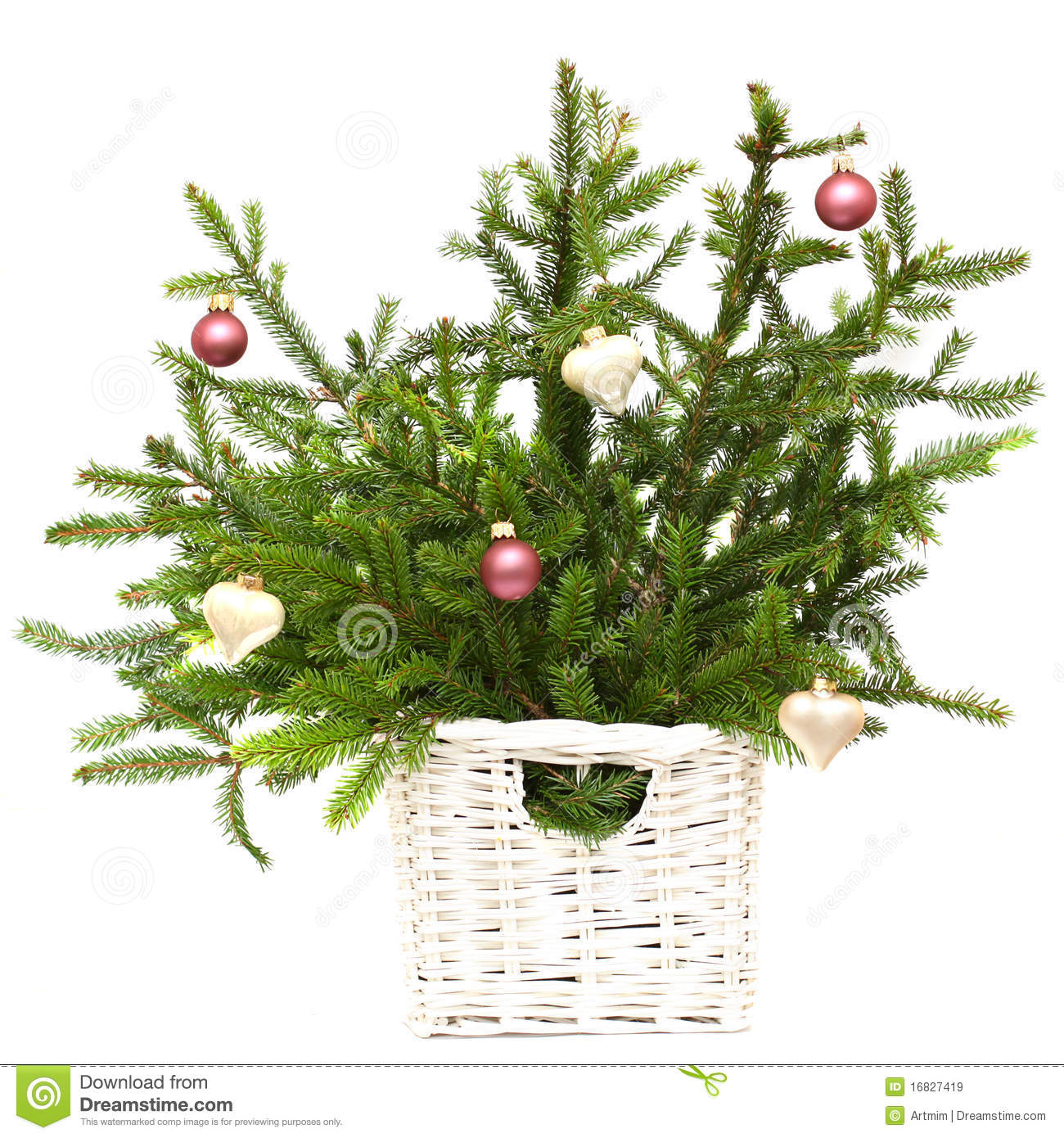 Christmas fir with decoration isolated