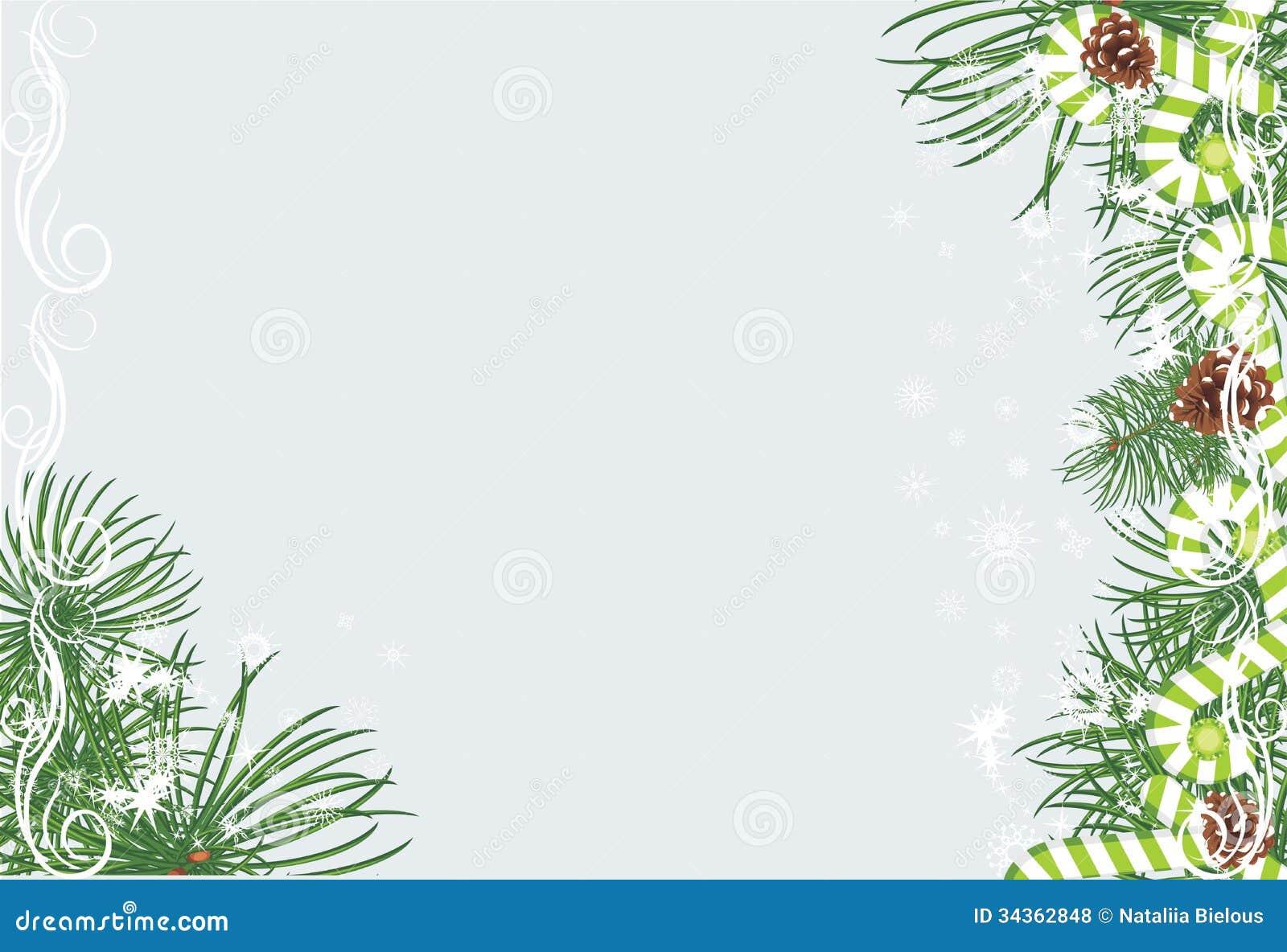 fir tree rash #11