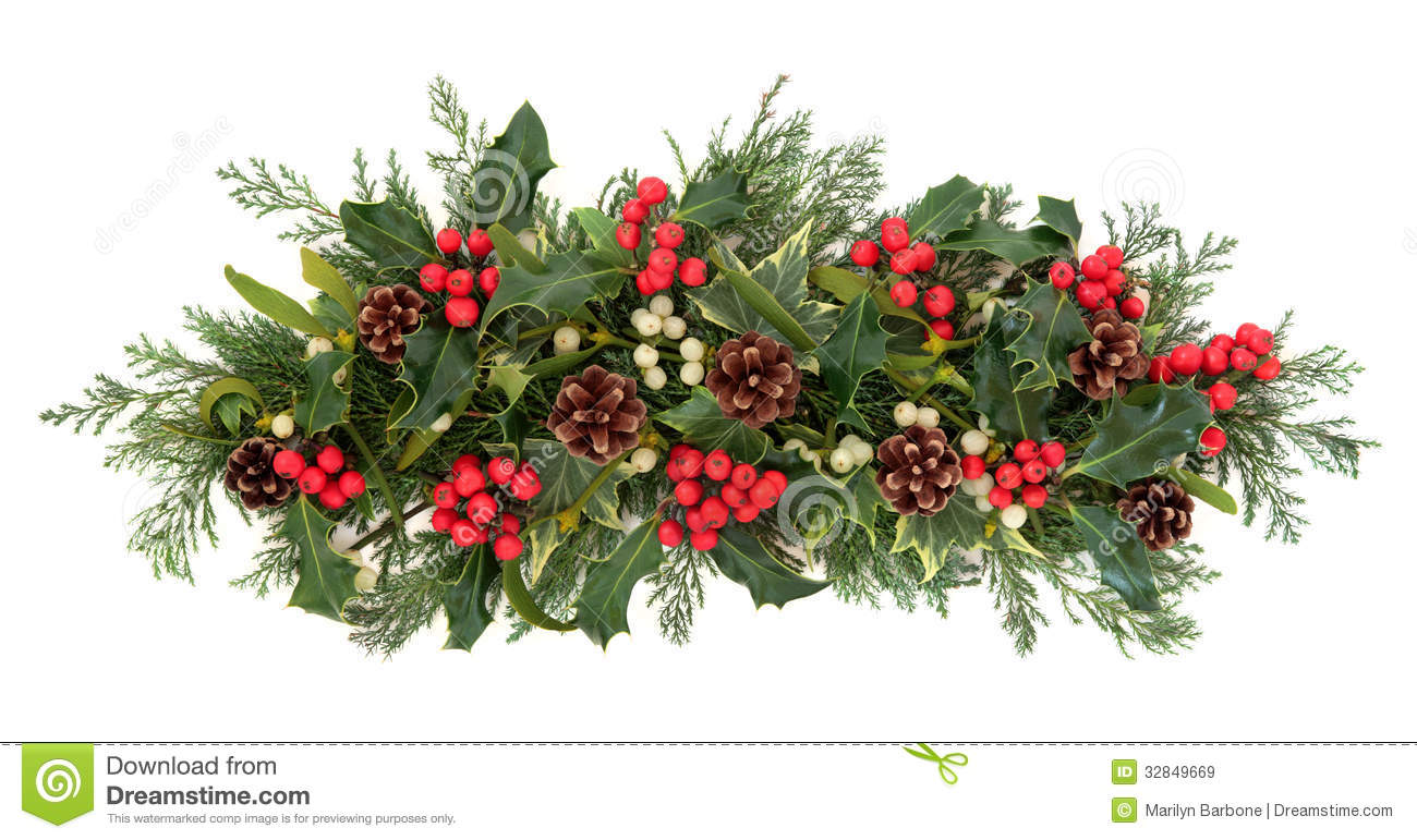 christmas floral decoration with holly ivy mistletoe pine cones and winter greenery over white background