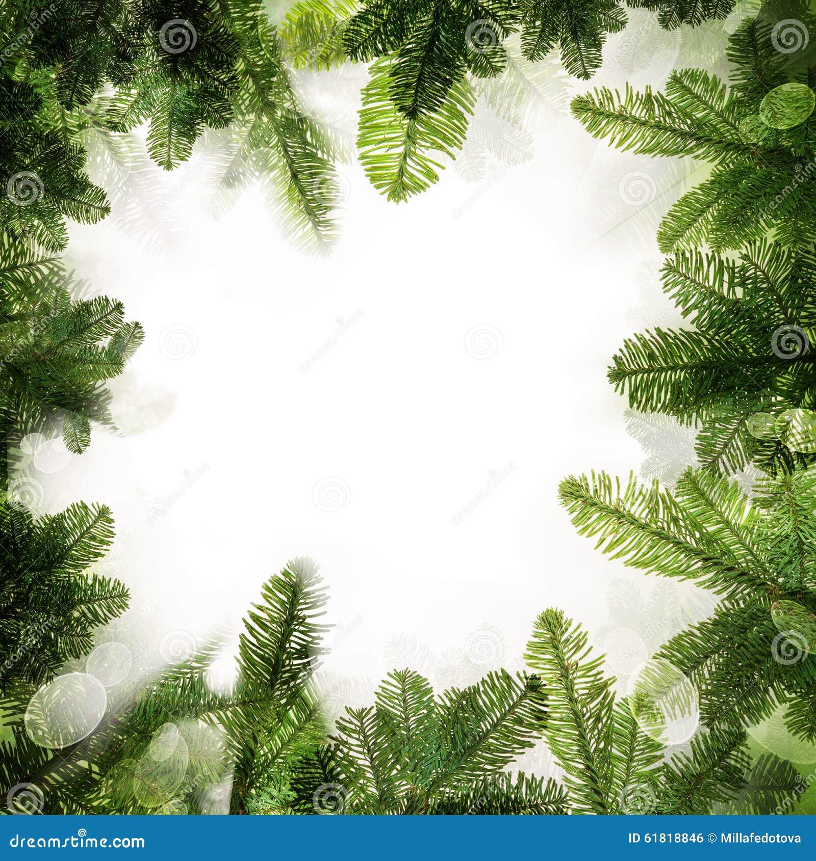 Christmas Frame. Background Border Of Green Xmas Tree Stock Photo ...