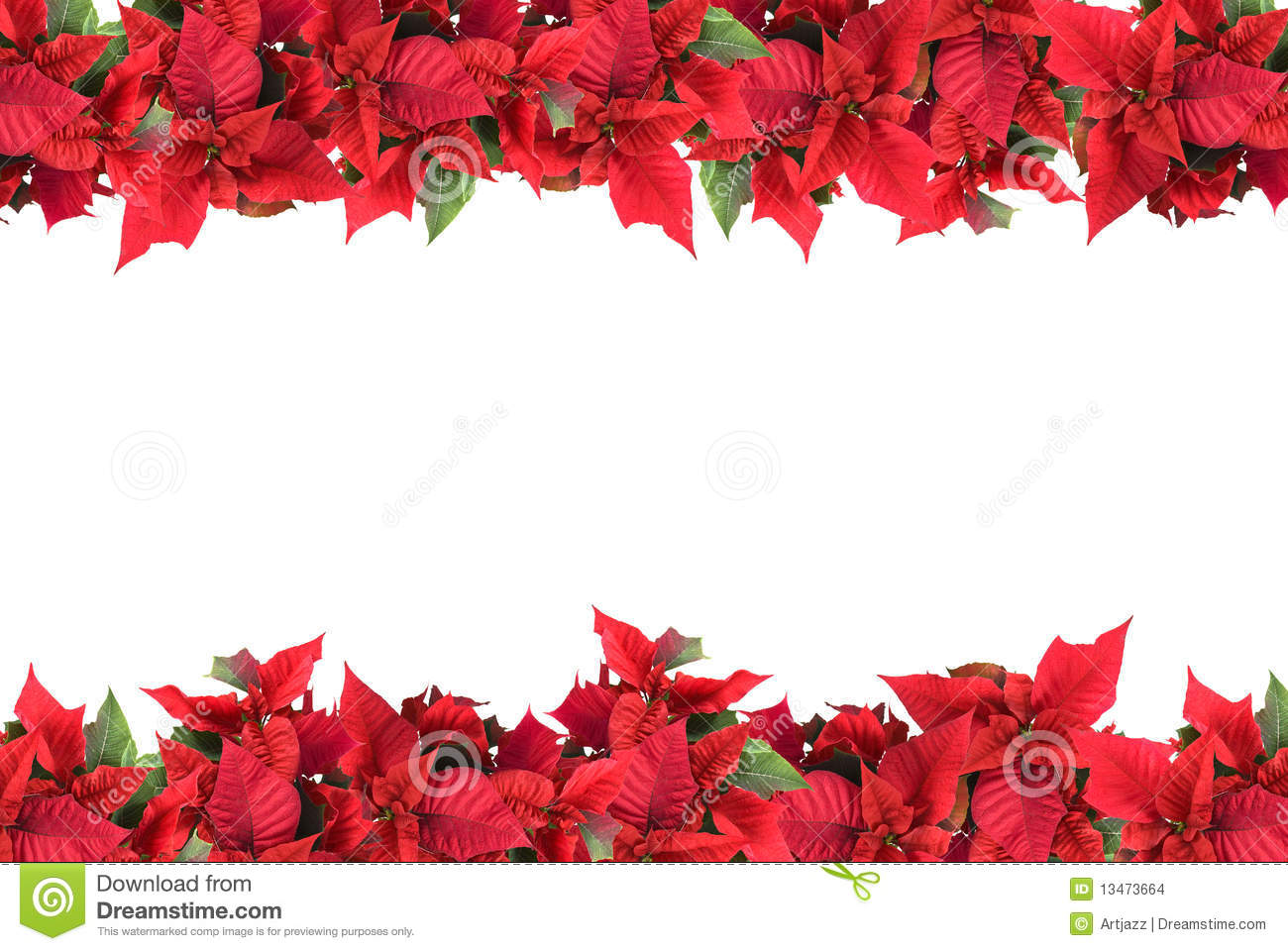 Christmas frame from poinsettias isolated stock photo for Poinsettia christmas tree frame