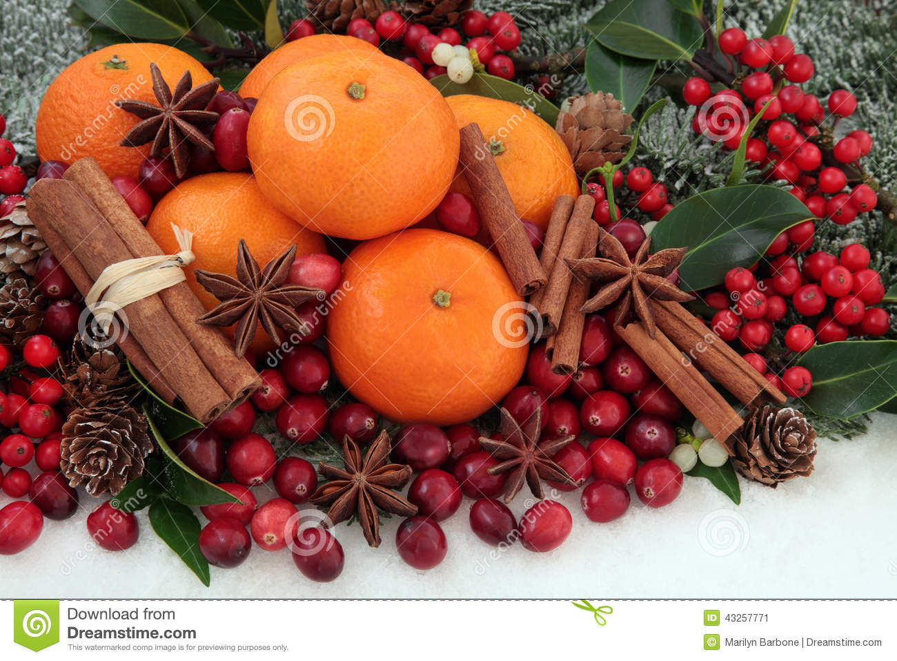 Christmas fruit and spice stock photo image 43257771 for Spiced cranberry sauce with orange and star anise