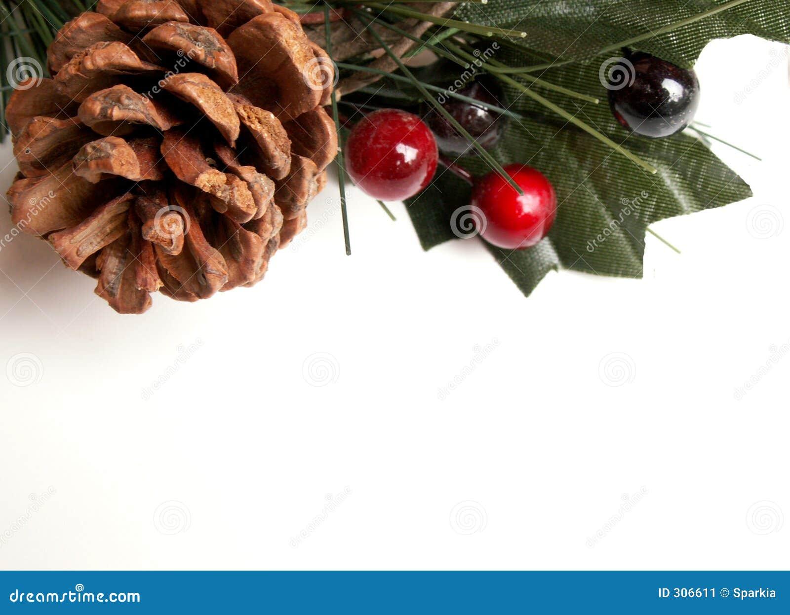 Christmas Greenery Stock Image Image Of Flowering