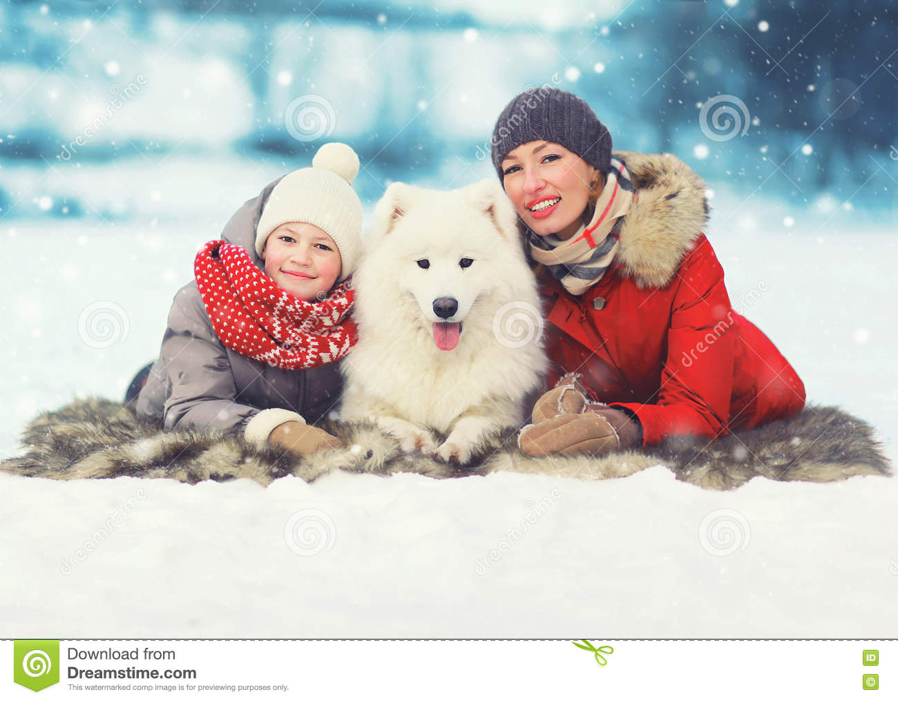Christmas happy smiling family, mother and son child walking with white Samoyed dog in winter day, lying on snow