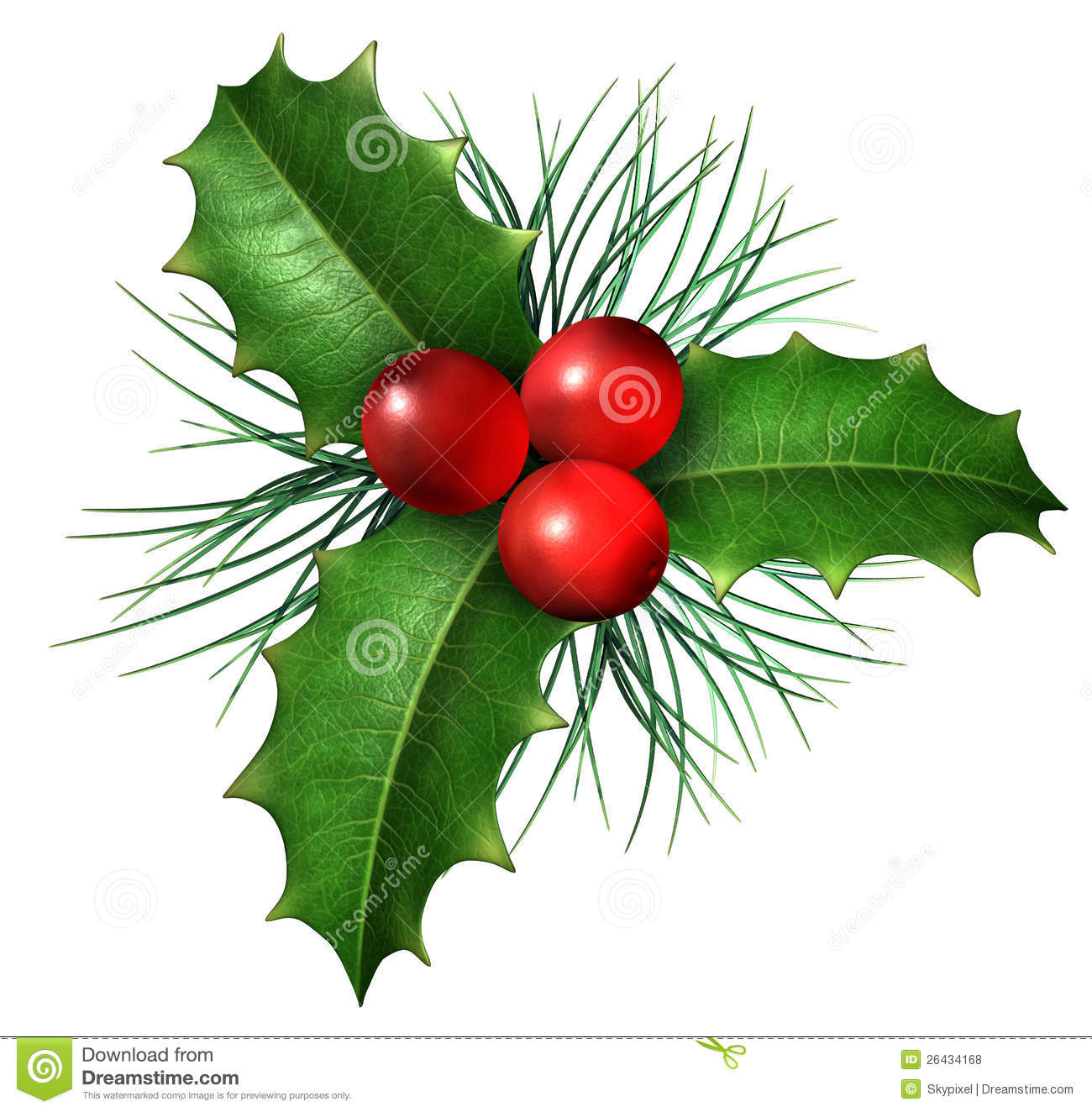 Christmas Holly stock illustration. Image of nature ...