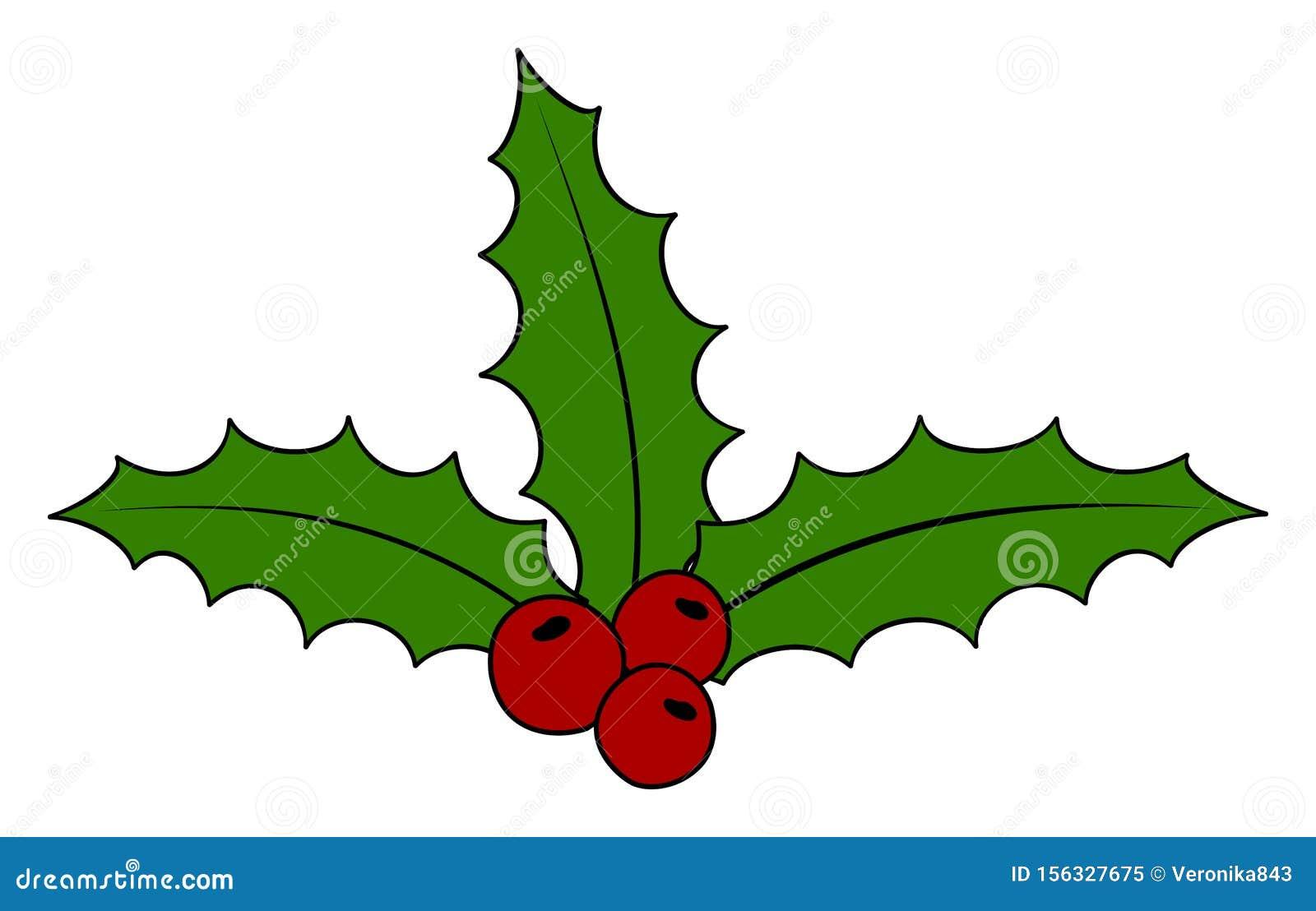 Christmas Holly Cartoon.Christmas Holly Berry Icon Cartoon Vector Illustration
