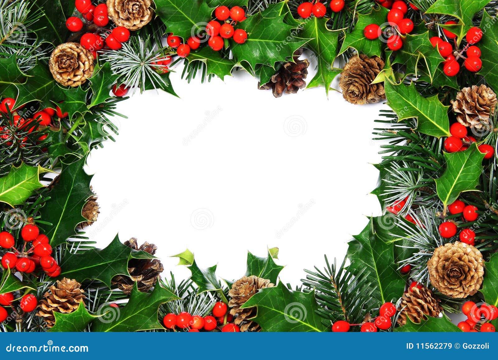 Christmas holly border stock image of pine cypress
