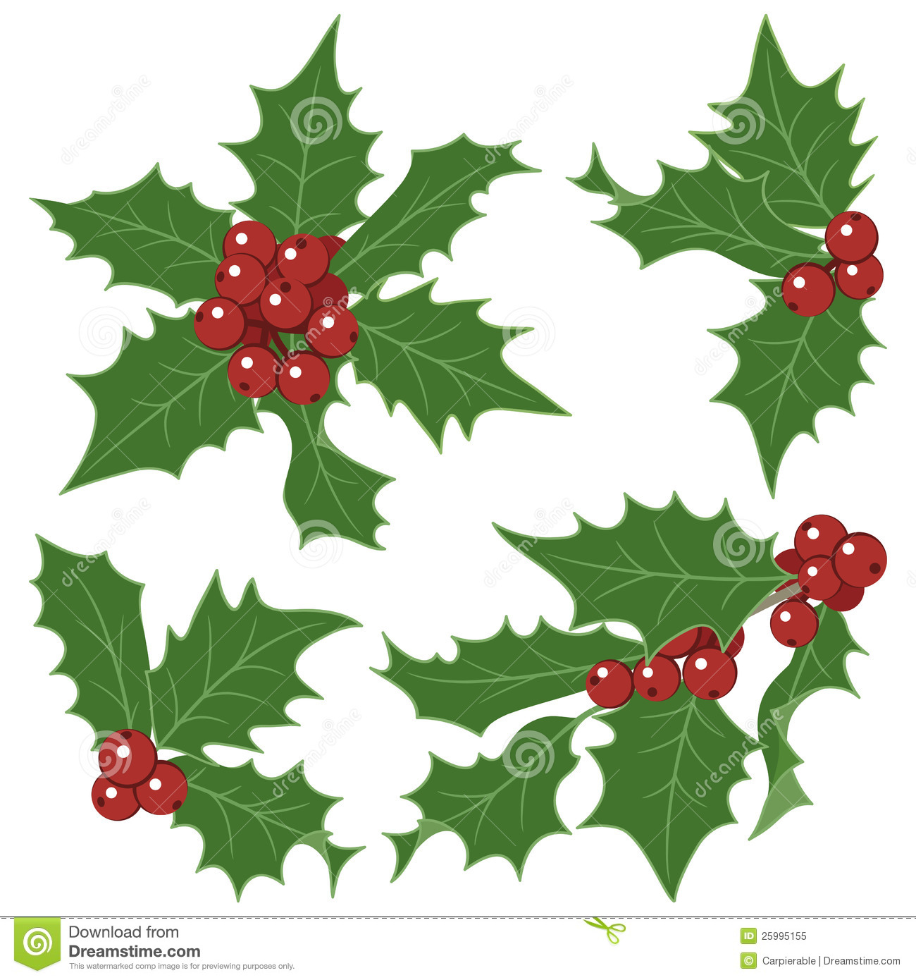 Search Results For Pictures Of Christmas Holly Berries