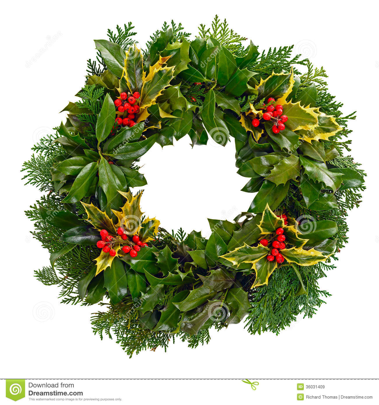 Christmas holly wreath isolated stock image