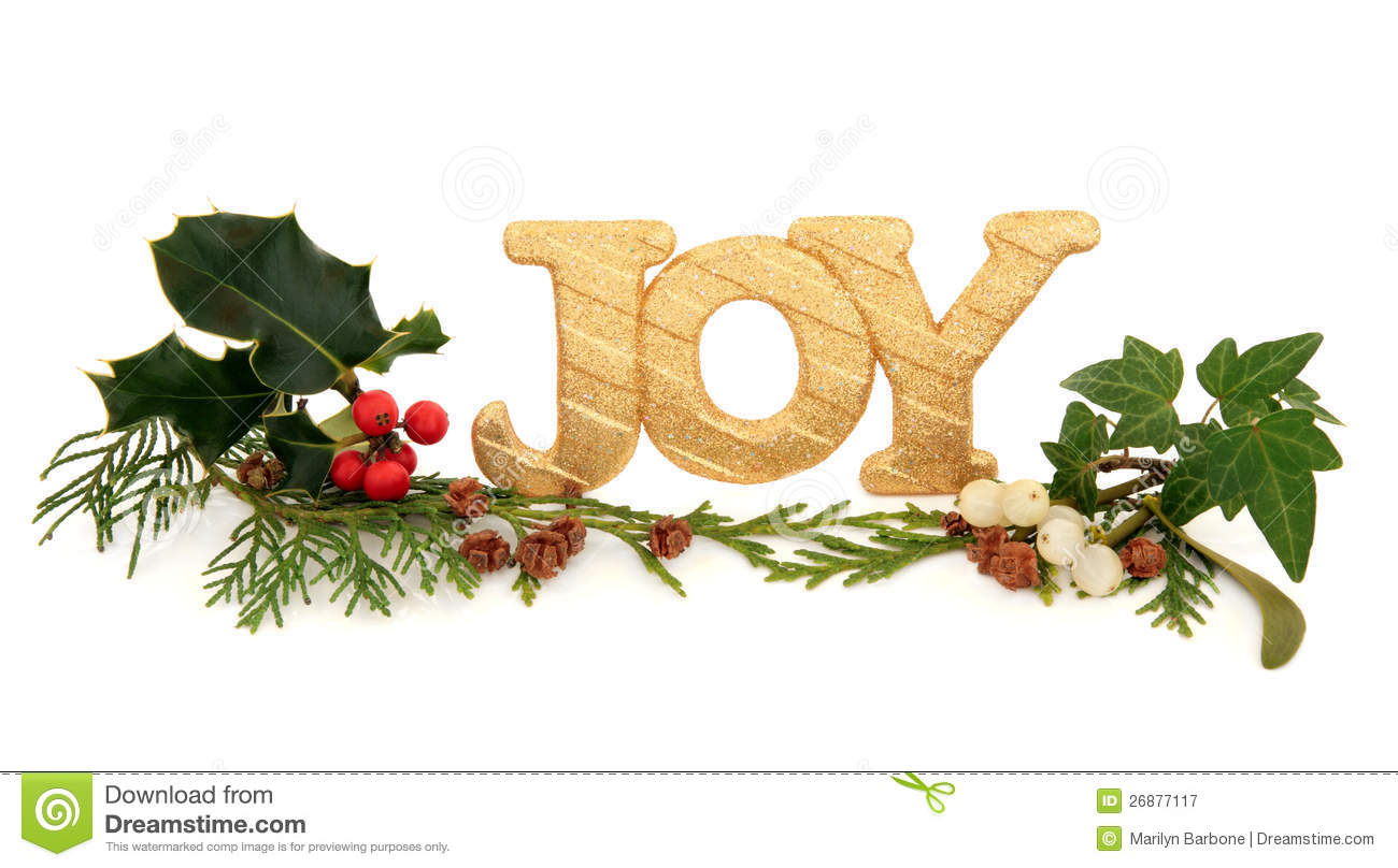 Christmas Joy stock image. Image of happiness, colourful - 26877117