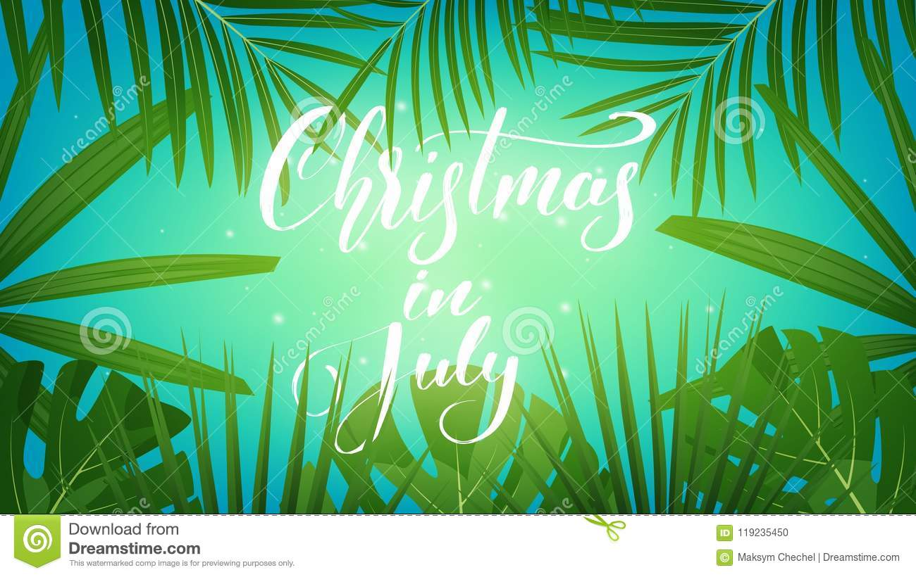 Christmas In July Background Images.Christmas In July Tropical Background With Exotic Palm