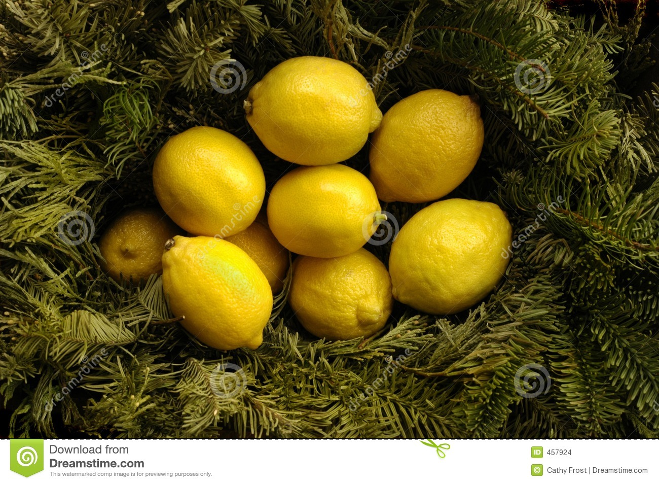 Download Christmas Lemons stock photo. Image of bowl, pretty, warmth - 457924