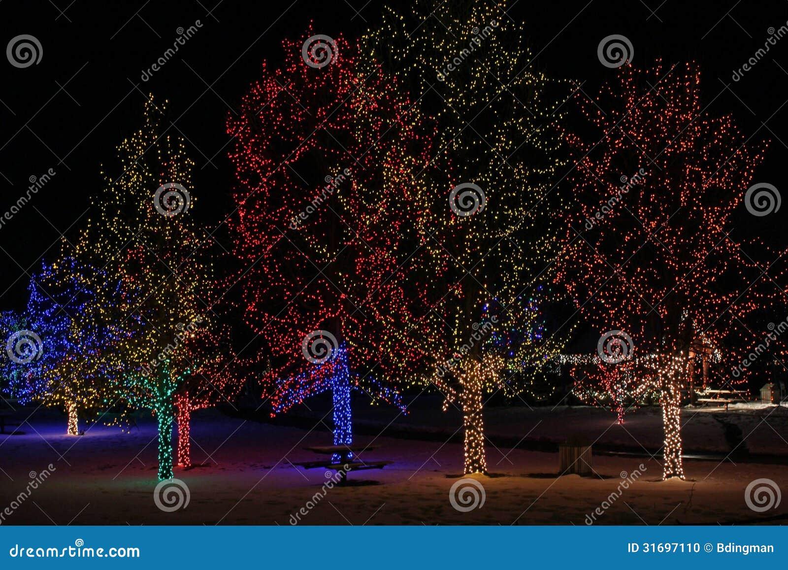 Christmas Lights Stock Photo Image 31697110