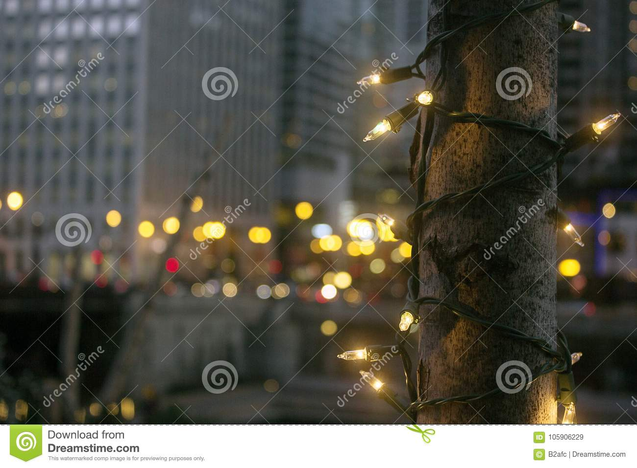 Christmas Tree Downtown Chicago.Christmas Lights Decorate A Tree Stock Image Image Of