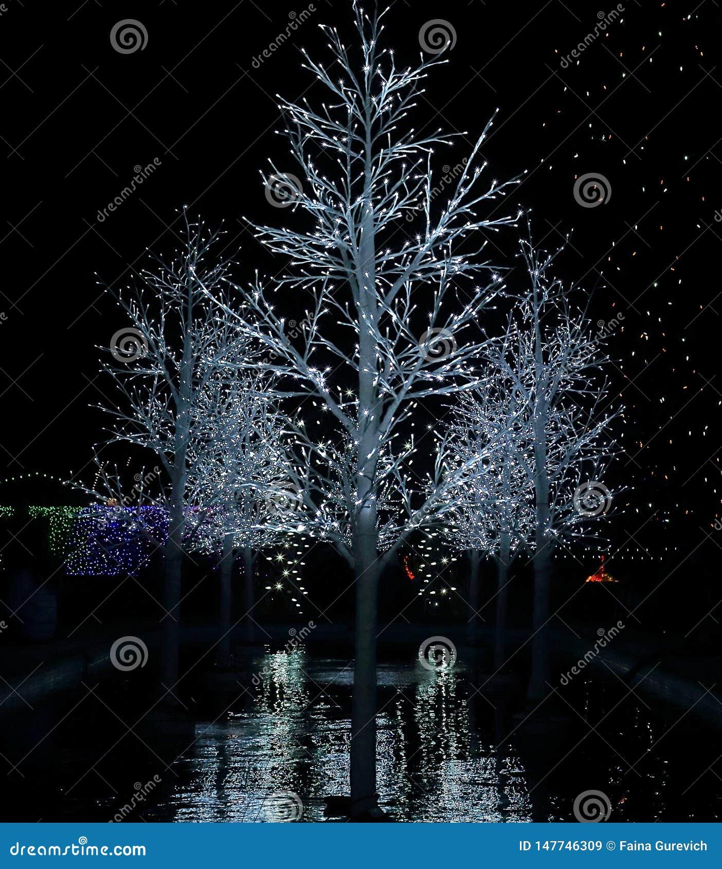 Christmas Lights Festival And Celebration In Hudson Gardens Stock