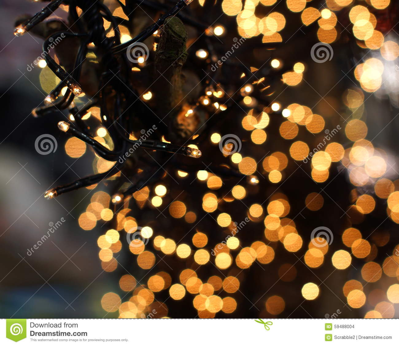 Beautiful christmas lights - Christmas Lights Hanging In A Tree Stock Photo