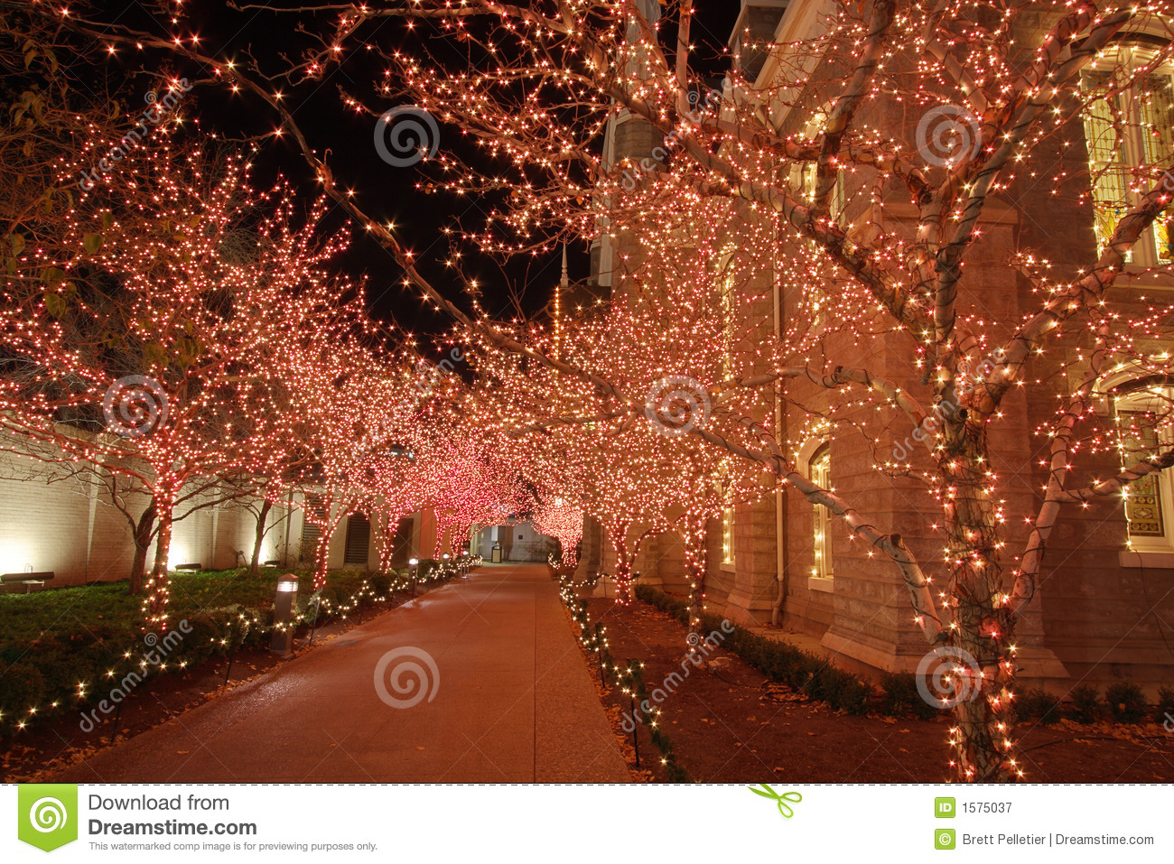 Christmas Lights In The Night Royalty Free Stock Photography ...