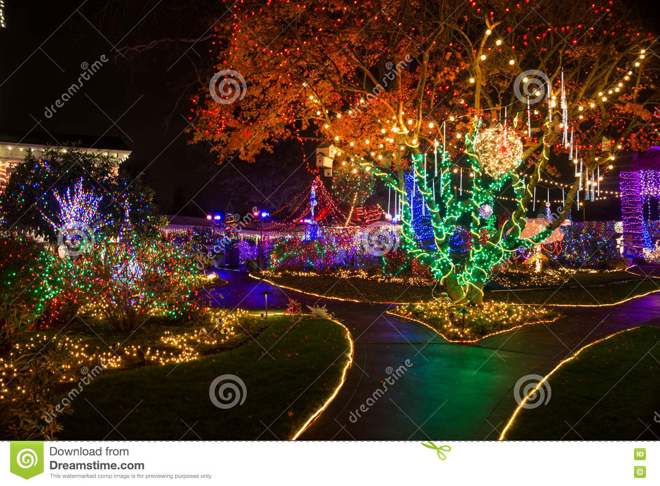 Christmas lights outdoor editorial stock photo Image of