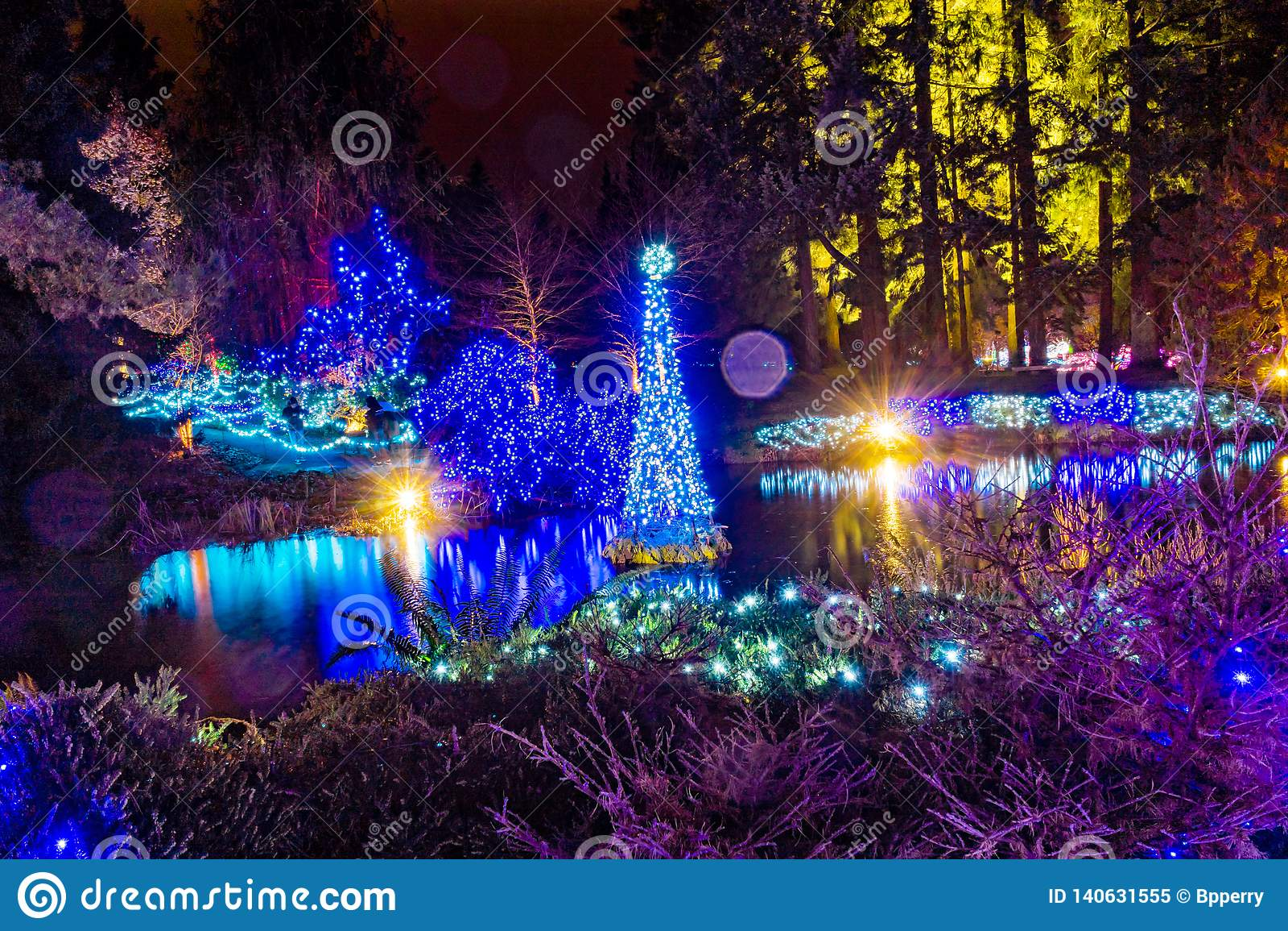 Vancouver Christmas Lights.Christmas Lights Reflection Van Dusen Garden Vancouver