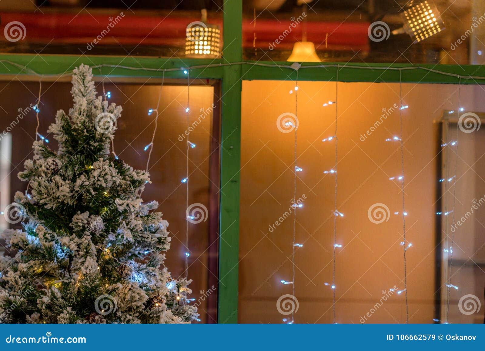 christmas lights and tree outside house