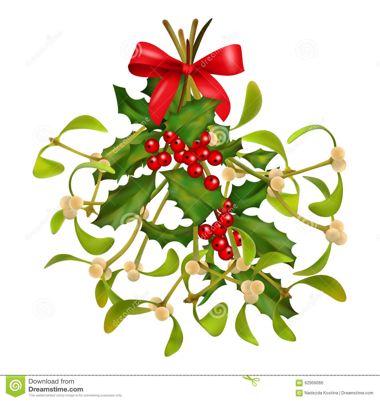 Christmas Mistletoe And Holly Bouquet Stock Vector ...