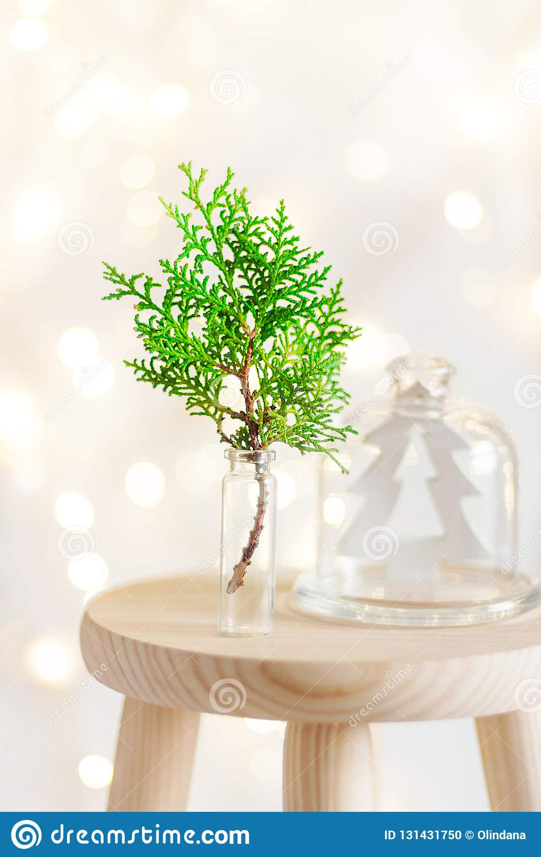 Christmas New Year home interior decoration background. Green juniper twig in glass wooden fir tree ornament in cloche dome jar