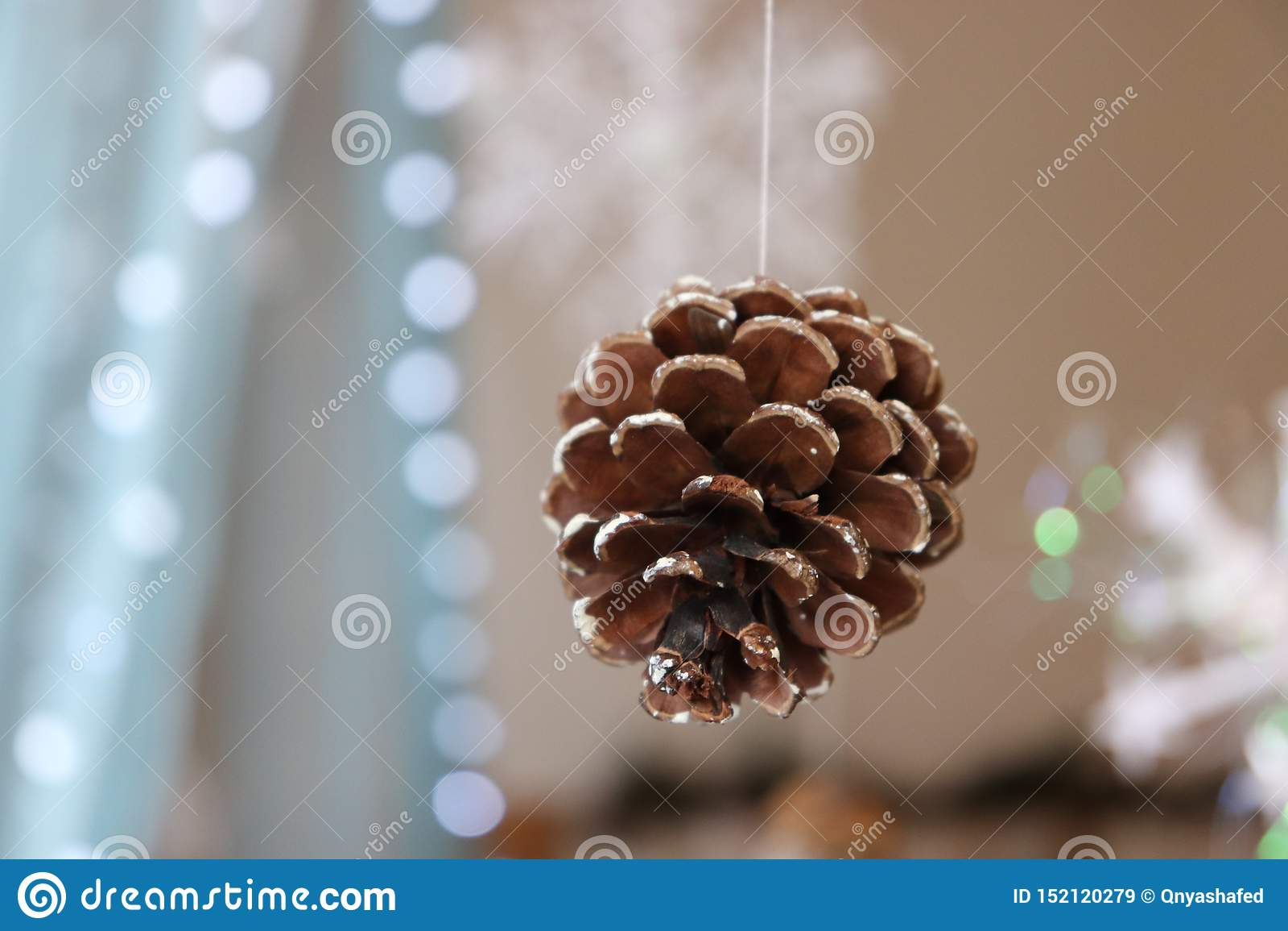 Christmas New Year tree christmas lights pinecone