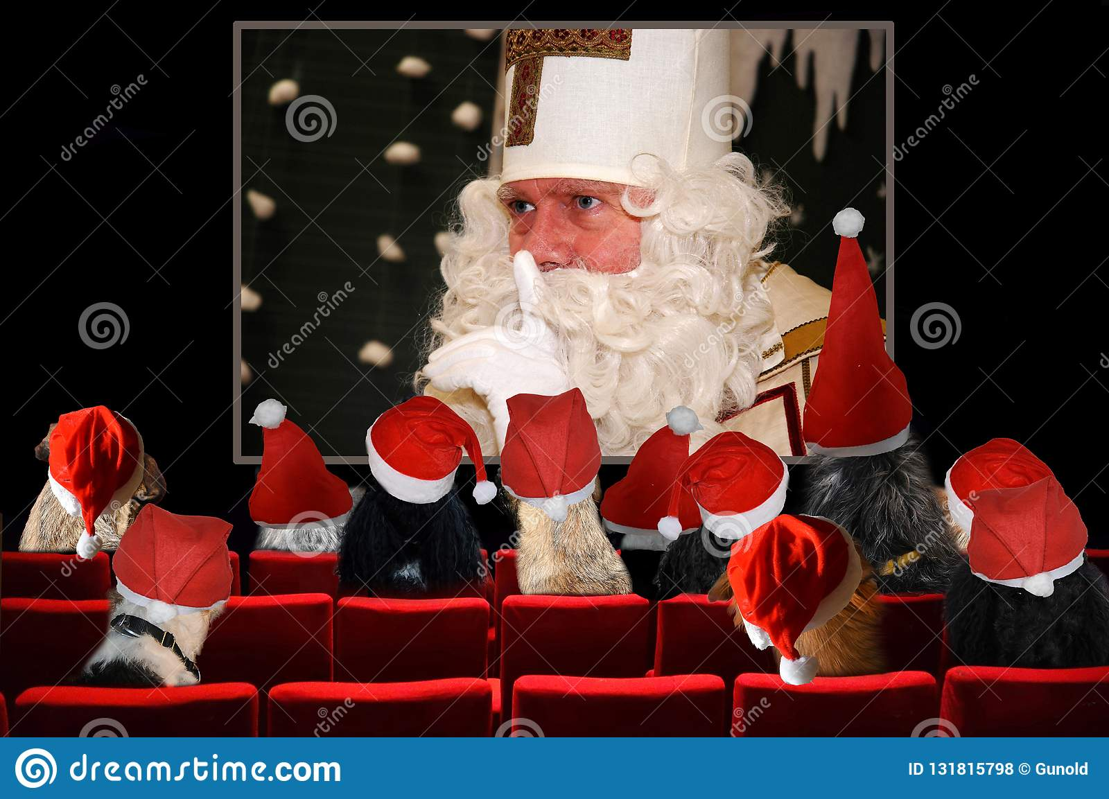 Christmas party, dogs looking Santa Claus movie in Cinema