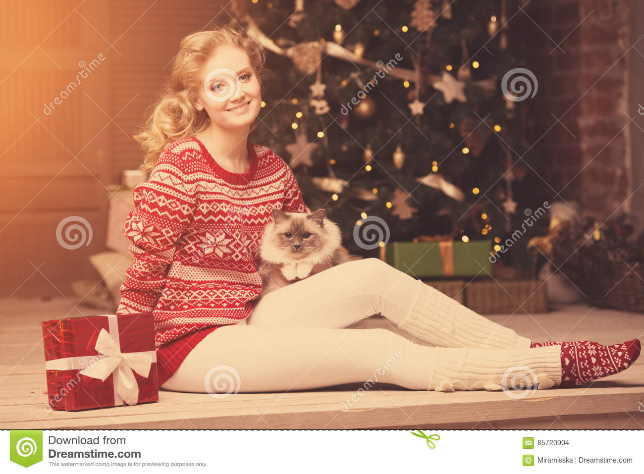 Christmas party, winter holidays woman with cat. New year girl.